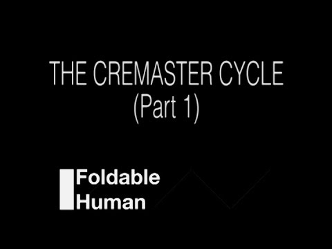 Folding Ideas - The Cremaster Cycle (Part 1 of 2)