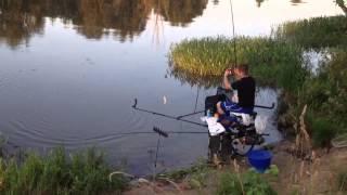Рыбалка на фидер Emajõgi 12-13 июля 2013г.