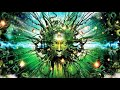 Download Lagu Psychedelic Deep Trance & Psychill Music Mix Mp3 Free