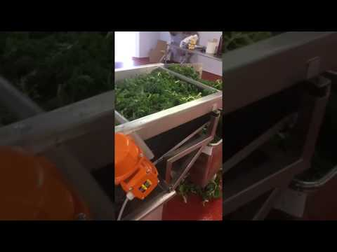 Salad Flume