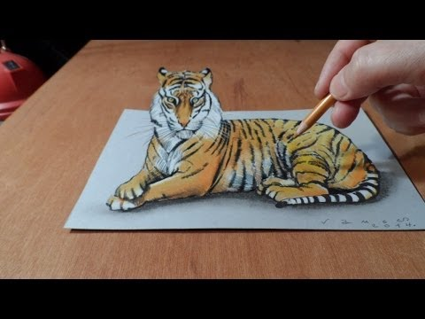 Trick Art, Watch my Draw a 3D Tiger, Time Lapse