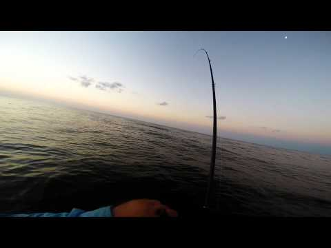 Wade Fishing for Speckled Trout – Galveston