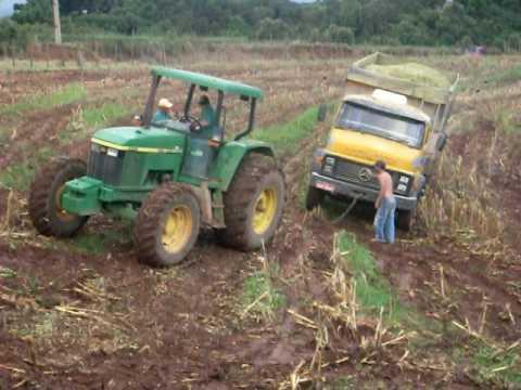 silagem de milho 2010