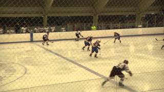 Tournament: Girls Hockey vs Dedham