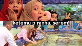 Video Seru-seruan Bareng Piranha & Hiu di Trans Studio | SOHWAcam MP3, 3GP, MP4, WEBM, AVI, FLV November 2018
