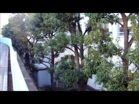 すみれが丘小学校. 横浜市都筑区2012年