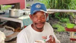 Published on Nov 20, 2014 180 Days in Dominica is a mini docuseries based on a Canadian's view on a beautiful, but rather unfamiliar island in the Caribbean.