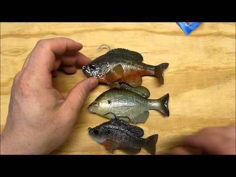 Huddleston Bluegill (in and out of the water)