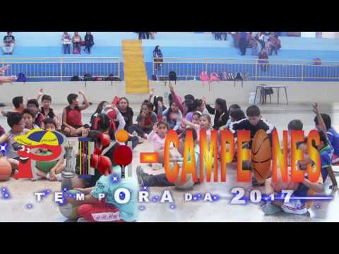 ESCUELA MUNICIPAL PIKI-CAMPEONES 2017