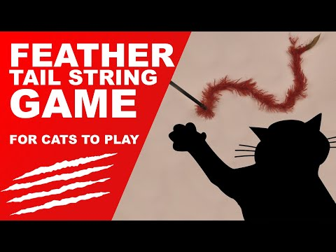 😻Cat Games - Feather Tail String (addictive)