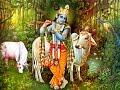 Lord Krishna's Flute