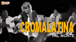 Pal Monte - Croma Latina