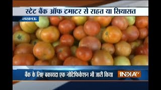 State Bank of Tomato: Congress starts tomato bank in Lucknow for common man