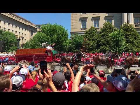 Caps Parade 12Jun18 11
