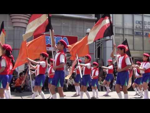 赤羽馬鹿祭り'17 パレード 赤羽小学校 レッドウイング