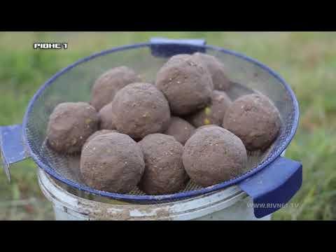 Риболовля за допомогою штекера на р. Горинь. Частина 1 [ВІДЕО]