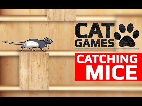 CAT GAMES - CATCHING MICE (ENTERTAINMENT VIDEOS FOR CATS TO WATCH)