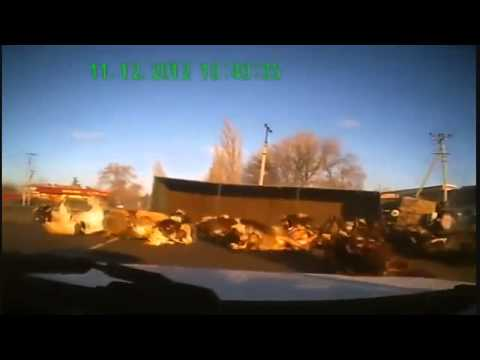 original channels rollout - Also in slow-motion! Russian truck driver fails to drive and crashes with cows in his trailer. Incredibly funny and crazy!! Truck carrying loads of cows flip...