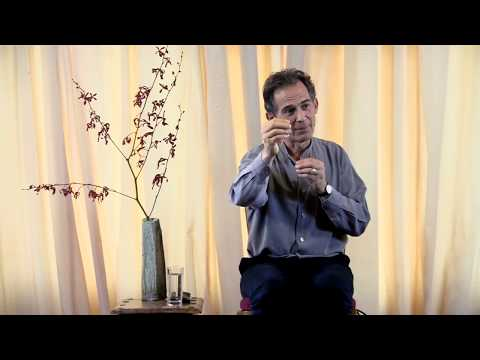 Rupert Spira Video: Using Mantra Meditation As A Tool For Integration