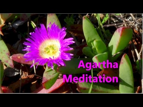 Agartha Meditation ... By Alice ..