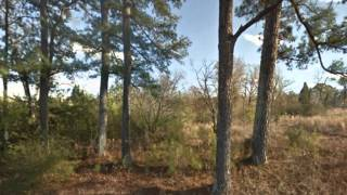 Bessemer (AL) United States  city photos gallery : Cheap Land for Sale in Alabama – 3.98 Commercial Acres – Bessemer, AL 35020