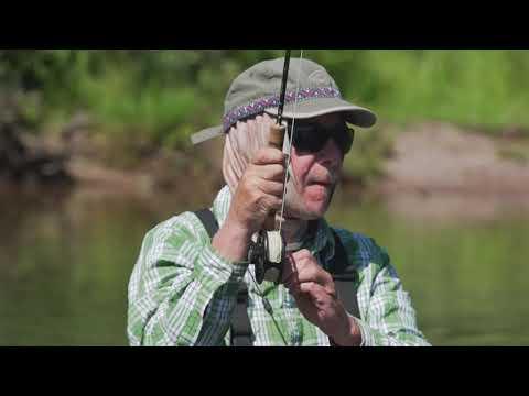 Montana Wild Trout Fishing