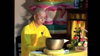 19 - Tiếp xúc với bảy bước chân đi của Đức Phật - HT Thích Thái Hòa