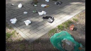 Typowy widok w Polskich lasach czyli tak śmiecą Polacy w lasach…