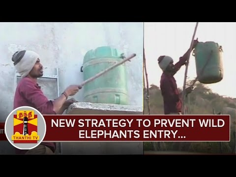 New-Strategy-to-Prevent-Wild-Elephants-Entry-into-Farming-Lands-24-02-2016