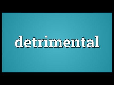 Detrimental Meaning