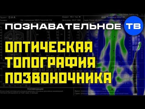 Вторая топография позвоночника (Познавательное ТВ Артём Войтенков) - DomaVideo.Ru