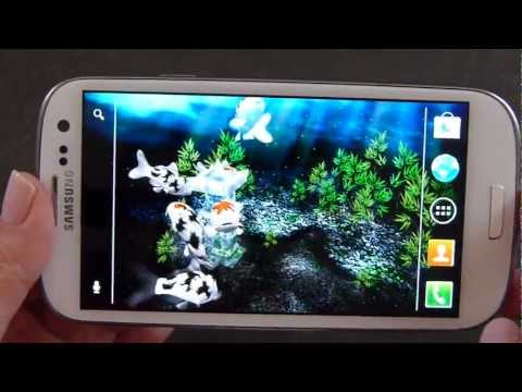 Video of My 3D Fish II