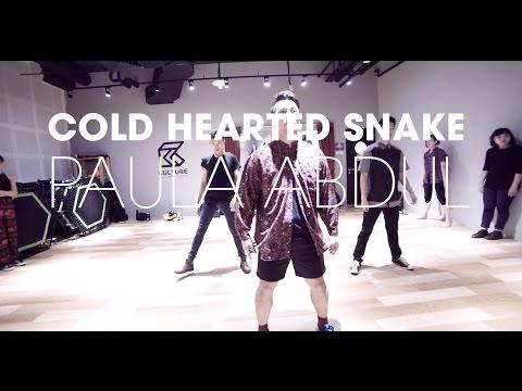 Cold Hearted Snake  - Paula Abdul / Amin Waacking Choreography