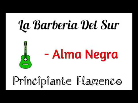 La Barberia Del Sur -Alma Negra   Principiante Flamenco. (видео)