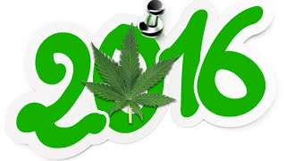 From Under the Seed Desk with Marijuana Man: 2016 … The Year in Review by Pot TV