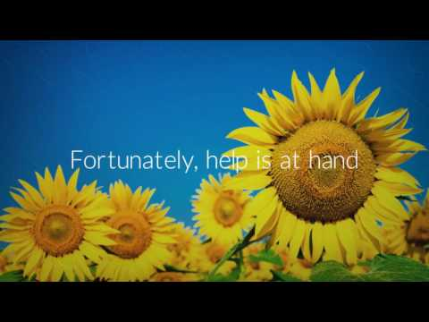 Alexa Warner - Positivity Life Coaching and Hypnotherapy