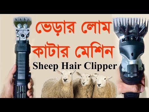 ভেড়ার লোমকাটার মেশিন  Sheep Hair Clipper  Sheep Hair Cutting Machine