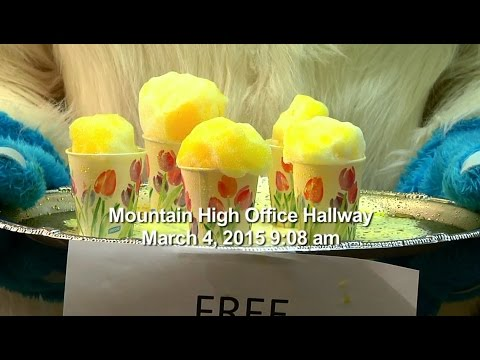 This Is Mountain High - Free Snow Cones