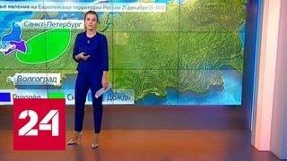 За 10 дней до нового года в Москву пришла оттепель