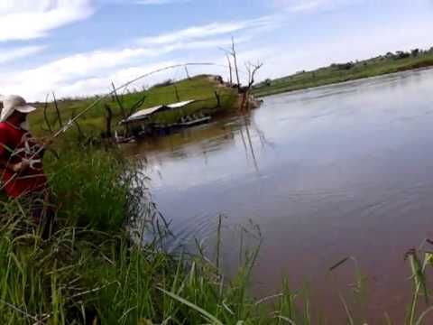 Pescando Taguara em Tupaciguara