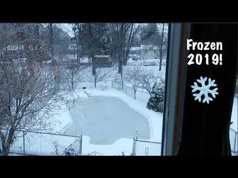 Frozen 2019! ❄️