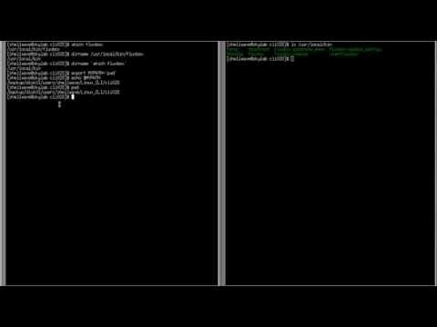 Linux Command-Line Interface (CLI) Tutorial #028 - Backtick Or Backquote