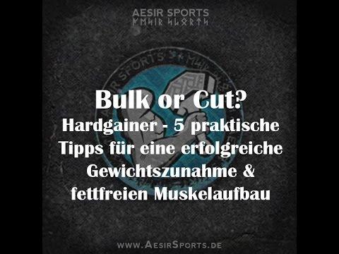 Bulk or Cut – Teil 2 – 5 Regeln für Hardgainer