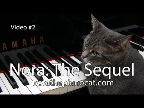 """Nora"" Tickling The Ivories Once Again… Even Better"