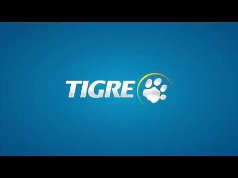 Tigre Presión Infraestrustura Junta Elastica