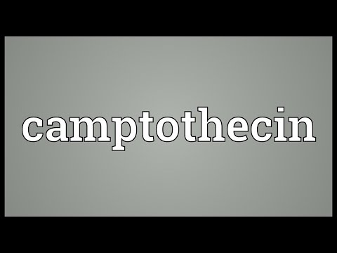 Camptothecin Meaning