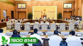 Nông nghiệp | Tiếp tục lấy ý kiến đóng góp cho Dự thảo Luật Trồng trọt