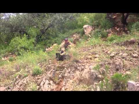 Rescatan Bomberos un perro en cerro del Embarcadero