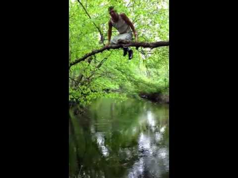 Pooping From A Tree Into A Stream