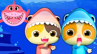 Video Baby Shark - Birthday Party | Baby Shark Dance | Nursery Rhymes | Kids Songs | Kids Cartoon |BabyBus MP3, 3GP, MP4, WEBM, AVI, FLV Juli 2019